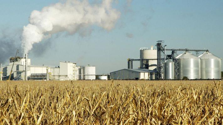 Комплекс переработки зерна